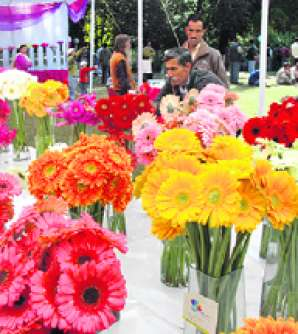 Two-day spring festival to begin on Saturday at Raj Bhawan