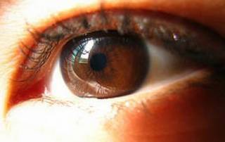 Three new genes linked to glaucoma identified