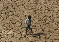 Drought: Centre puts onus on states