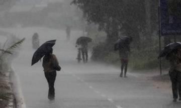 Unseasonal rains lash some parts of Maharashtra; houses, crops hit