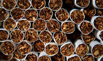 Tobacco accounts for 30 per cent of all cancers in males and females in India: Study
