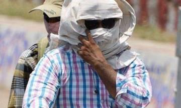 317 die of heatwave in Telangana this summer