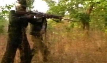 Three naxals killed in an encounter with security forces in Gadchiroli
