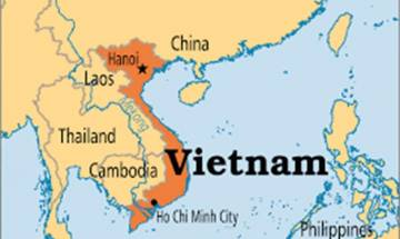 Vietnamese woman cuts off limbs for insurance payout
