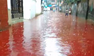Watch: Large-scale animal sacrifices, heavy rains turn Dhaka streets into rivers of blood