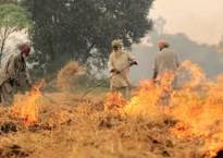 Delhi air pollution goes up on stubble burning