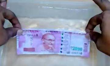 Watch viral video: This is what happens when new Rs 2,000 note is crushed and dipped in water for 30 minutes