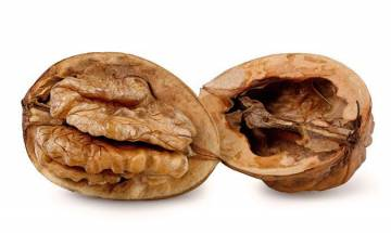 Walnut-enriched diet can prevent Alzheimer's disease, study claims