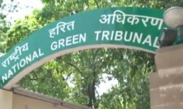 National Green Tribunal issues interim stay on Pune metro rail construction
