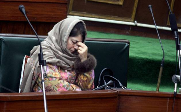 Kashmir cannot become Afghanistan or Syria; Kashmiri Pandits a collective responsibility: Mehbooba (PTI Photo)