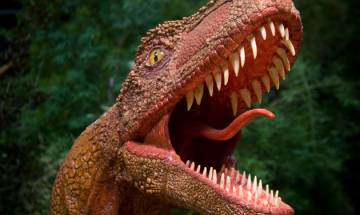 Would you like to touch a dinosaur and walk with it? They may soon bounce back to life, here's how