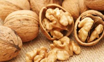 Walnut-enriched diet may improve sperm quality: Study