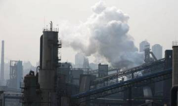 Taking B vitamins may help reduce harm from air pollution: Study