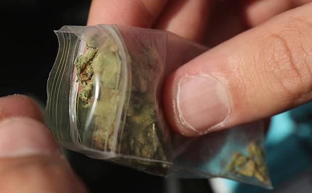 Seven quintals of marijuana seized from village in Jharkhand (Representative Image)