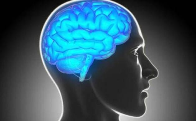 'Sci-fi' cancer therapy to fight brain tumors, finds study
