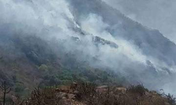 Mount Abu forest fire continues to rage on fourth day