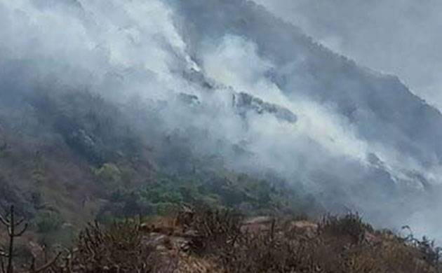 Mount Abu fire - Representative image