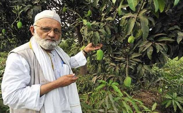 Mango lovers can now enjoy this new quality of king fruit (source: PTI)