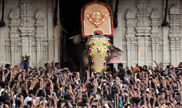 Thrissur Pooram 2017: Thousands celebrate festival as PETA raises issue of animals' rights
