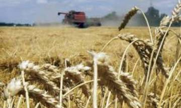 Farm loan recovery slows down in Punjab as growers 'refuse' to repay debts, await Cong govt's waiver scheme