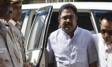 Section of state ministers' revolt against me was due to fear, says Dhinakaran