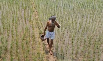 Modi Govt extends interest subsidy on short-term crop loans to farmers; prompt repayers to get loan at 4%