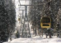 J&K: Gondola tower collapses due to strong winds in Gulmarg; 7 dead