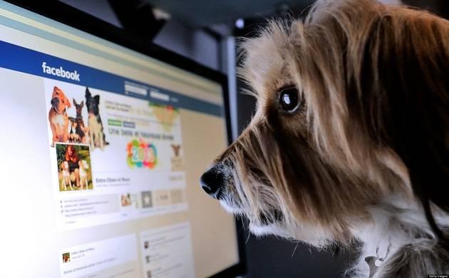 Facebook: The social media King hits two billion user mark