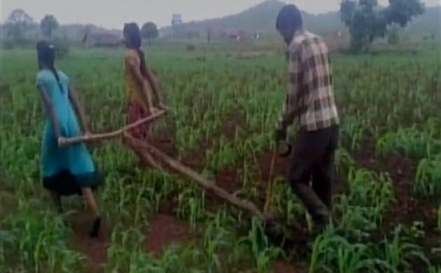 Madhya Pradesh: Financial crisis forces farmer to use daughter as oxen in the field