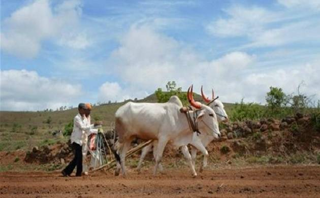 36 Lakh Maharashtra famers to get complete loan waiver: Devendra Fadnavis (PTI photo)
