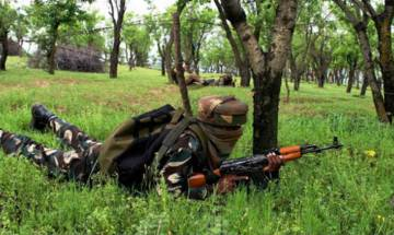 Assam: NDFB militant killed in encounter with security forces