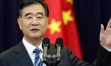 China-Pakistan friendship 'stronger than steel, sweeter than honey': Chinese Vice Premier Wang Yang
