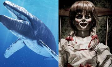 'Play Blue Whale game or Annabelle will kill you',  MP students threatened