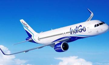 Raipur-Hyderabad IndiGo flight makes precautionary landing after bird hit plane