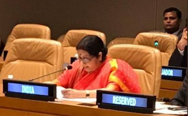 India at NY: Swaraj reaffirms India's commitment to Palestinian cause at NAM ministerial meet