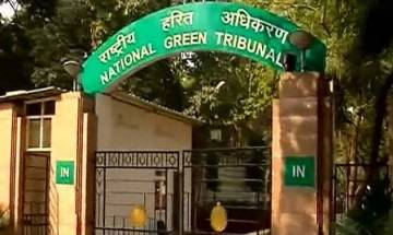 NGT asks Delhi govt to submit report on Yamuna post idol immersion