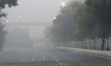 Delhi air pollution: Lt Governor orders ban on civil construction works, entry of trucks in capital