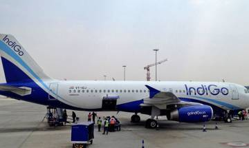 Chennai-Doha IndiGo flight suffers bird hit after take off, passengers accommodated on different plane