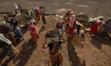 Govt disputes claim of delay in releasing MGNREGA funds in SC