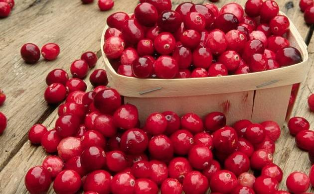 Cranberries, water, Lemon to your daily diet may help reduce harmful effects of deadly smog (Representational Image)