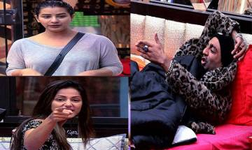 Bigg Boss 11, January 2: Shilpa Shinde and Hina Khan team up against Akash Dadlani