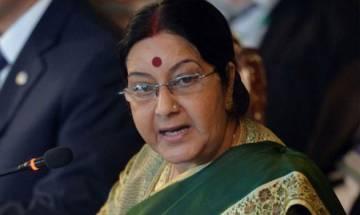Sushma Swaraj holds 'productive' talks with Maldivian FM: MEA