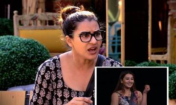 Bigg Boss 11 Finale Week: Vikas, Hina, Shilpa and Puneesh gets emotional, watch complete journey