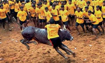 Jallikattu kills 19 year old youth audience in Tamil Nadu