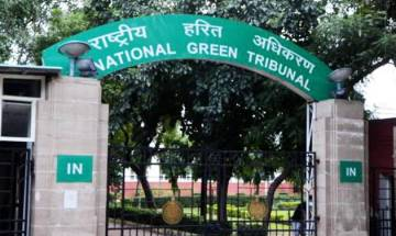 NGT directs CPCB to analyse samples of polluted Yamuna water