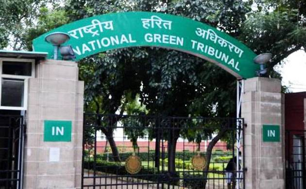 NGT directs CPCB to analyse samples of polluted Yamuna water (File Photo)
