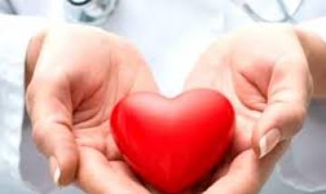 Eating yogurt may reduce heart disease risk: study