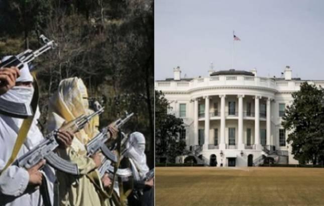 Pakistan has failed to take decisive actions against terrorists: White House (PTI)
