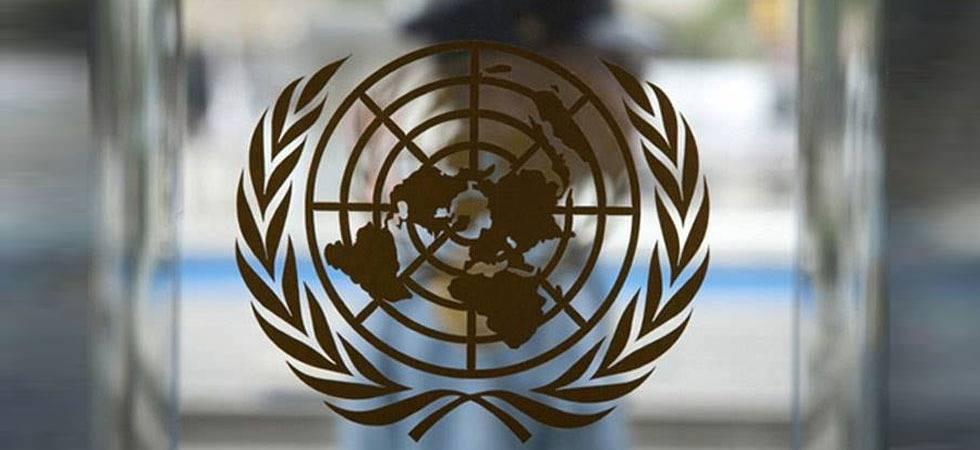 UN Security Council (Source: PTI)