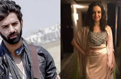 Barun Sobti-Sanaya Irani to come together again with new show?